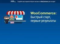 WooCommerce быстрый старт, первые результаты