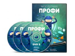 WordPress профессионал